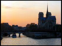Notre Dame von Pinar Öz