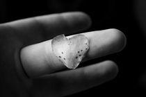 Love Petal by Aaron Wood