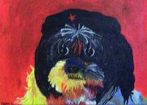 Che Dog Vara