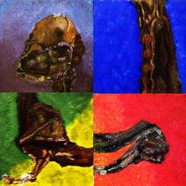 Dried Dead LLama Fetus von Cedric Alessandro