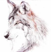 Portrait-wolf