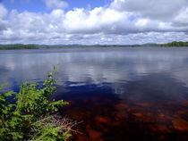 Swedish lake polarisation von Peter Hoetmer