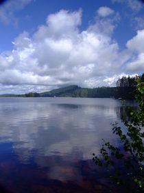 Swedish lake reflection von Peter Hoetmer