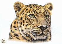 Leopard von Nicole Zeug