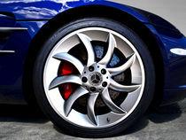 SLR Wheel  by Petra Kontusic