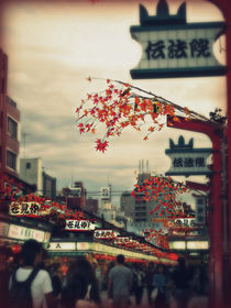 Asakusa Temple by Janice Tse