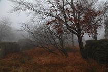 Nebelstimmung by Miloslava Habermehl