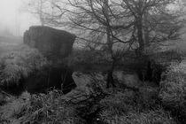 Hochmoor,Nebel von Miloslava Habermehl