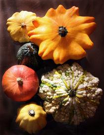 pumpkins by Moira Nazzari