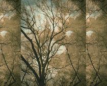 Head in the Clouds von iulia-spin