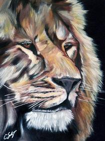 Lion-hires1