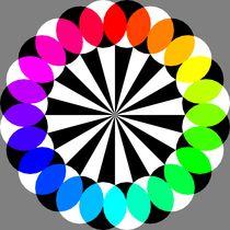 24gon-illusion
