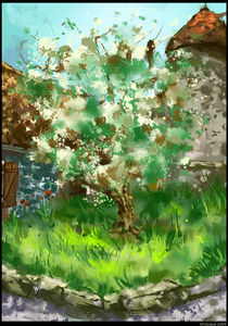 echinghen's tree von toubab