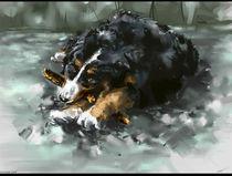 dog by toubab