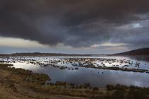 Titicaca-1824