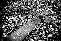 Fallen Cross von Amos Edana