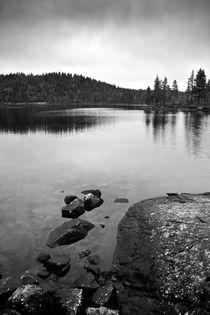 Gloomy Lake  von Amos Edana