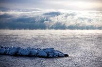 In the Middle of a Frozen Ocean von Amos Edana