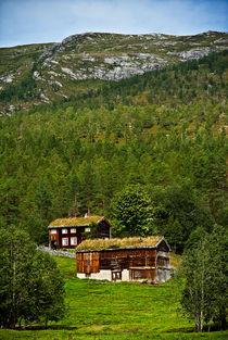 Typically Norwegian von Amos Edana