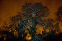 Untitled (Light Pollution) von Owen Martin