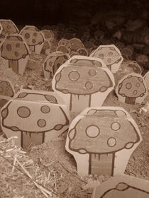 Mushroom memories by Ana Cristina Valencia