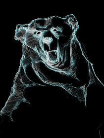 BEAR von loris