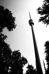 Stuttgart Fernsehturm von Falko Follert