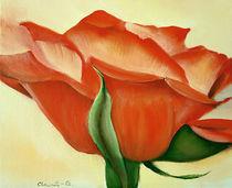Rosenblüte von Ingrid Clement-Grimmer