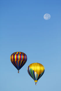 Fly Me to the Moon von Paul Anguiano