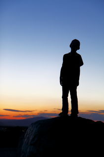 Sunset Silhouette von Paul Anguiano