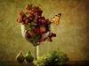 Gartentrauben1