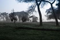 early morning 2 by Marcel Velký