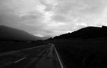 The road by Fernando Cesar