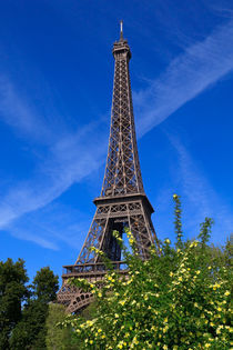 Paris in Spring by Louise Heusinkveld