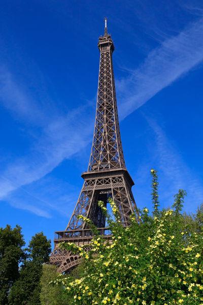 Eiffel-tower0008