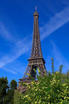 Eiffel-tower0008