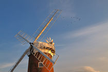 Horsey Drainage Mill, Norfolk by Louise Heusinkveld