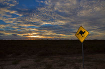 Australian Sunset in the Outback by Louise Heusinkveld