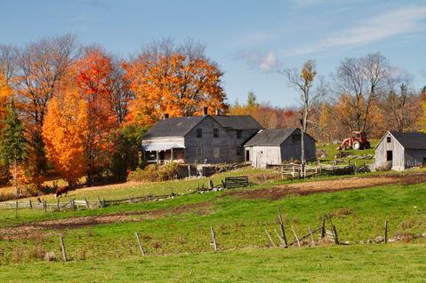 Ontario-farm0259