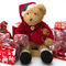 Teddy-at-christmas0005a