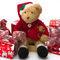 Teddy-at-christmas0005a