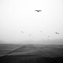 Emptiness by Alex Kotlik