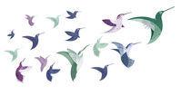 Hummingbirds-no-words