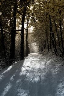 winter 2010 by Marcel Velký