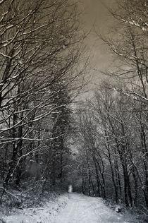 winter session by Marcel Velký