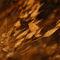 Bathing-in-the-orange-dusk-by-csaby1-d2aa0g4