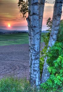 Sonnenuntergang von Wolfgang Dufner