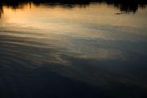 reflection by Marcel Velký