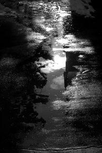 after rain by Marcel Velký