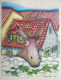 Donkey von Kresimir Bajsic